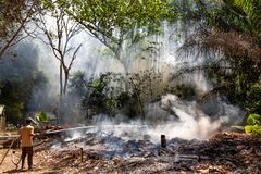 A man in a gauze bandage and a fire hose trying to put out the fire in the forest. Fire and smoke in the jungle.  Fills with water stock image