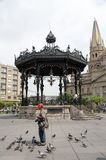 Man , gazebo, and Guadalajara Cathedral Royalty Free Stock Images