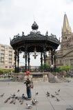 Man , gazebo, and Guadalajara Cathedral Royalty Free Stock Images