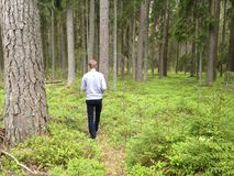 Man geocaching in forest Royalty Free Stock Image