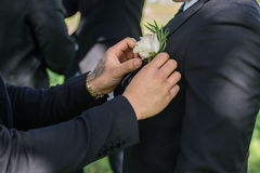 Man Getting Ready. Set up a flower on a jacket Royalty Free Stock Photos