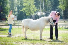 Man, girl and horse Royalty Free Stock Photography