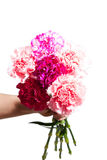 Man gives a bouquet of flowers Royalty Free Stock Photo