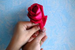 Man Gives a Red Rose to a Woman.  Stock Photo
