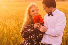 Man gives to woman bouquet of poppies in wheat field on the dusk. Man gives to women bouquet of poppies in wheat field on the dusk, Malta royalty free stock image