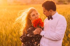 Man gives to woman bouquet of poppies in wheat field on the dusk. Man gives to women bouquet of poppies in wheat field on the dusk, Malta stock photography