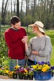 Man giving daisy his girlfriend Royalty Free Stock Photos