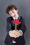 Man giving fabric rose. Boy with jacket is donating a fabric red rose Stock Image