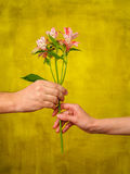 Man giving flower to woman Stock Images