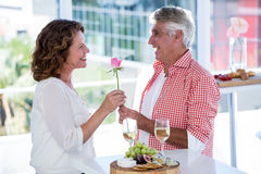 Man giving flower to woman Royalty Free Stock Photography