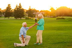 Man giving flowers to woman. Royalty Free Stock Photo