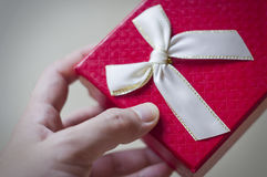 Man giving gift. Royalty Free Stock Photo