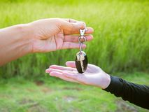 Man is giving key of car to woman Stock Images