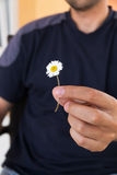 Man giving a present with a little daisy flower. Focus on flower. Close up Royalty Free Stock Photos