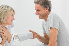 Man giving present to his pleased partner Stock Photos