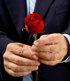 Man giving rose Royalty Free Stock Image