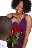 Man Giving Roses. Man giving woman red roses Royalty Free Stock Image