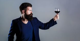 Man with a glass of red wine in his hands. Beard man, bearded, sommelier tasting red wine. Sommelier, degustator with. Glass of wine, winery, male winemaker royalty free stock photo