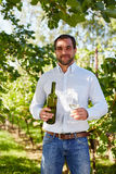 Man with a glass of white wine in the vineyard Stock Photography