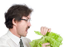 Man in glasses eats sheet of the salad Royalty Free Stock Photography