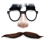 Man with glasses and mustache Stock Image
