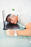 Man with glasses sleeping on his laptop Royalty Free Stock Images