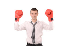 Man with a gloves. Man in office with a boxing gloves stock photo