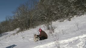 Man Goat Congratulates On Christmas. The man in the comic viking hat with horns playing with a goat in the snow stock video