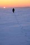 Man goes through snowy field Stock Photos