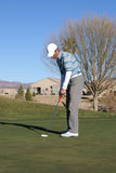 Man Golfing. Man putting on green in Arizona in the winter time ball just going in the hole Royalty Free Stock Images