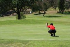 Man Golfing royalty free stock photo