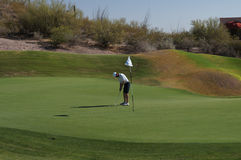 Man Golfing. Man putting on the green at the La Paloma Golf Course in Tucson Arizona Royalty Free Stock Photography