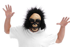 Man with Gorilla Mask. And Isolated Background Stock Images
