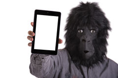Man with gorilla mask Royalty Free Stock Images