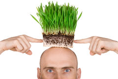Man with grass for hair Stock Photos