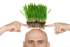 Man with grass for hair stock photography