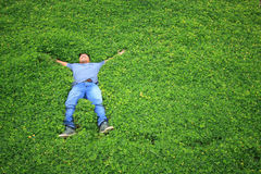Man on the grass or people sleep in the garden. royalty free stock images