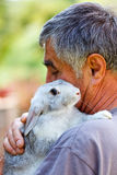 Man with gray rabbit. Senior man holding a gray rabbit on shoulder Royalty Free Stock Photos