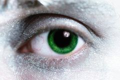 Man green eye  with bright make-up Stock Image