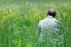 Man on green field. Old man on green field Stock Photography