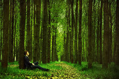 Man in a green forest Royalty Free Stock Photos