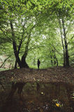 Man in green forest with lake Stock Photography