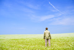 Man on green meadow. Royalty Free Stock Photography