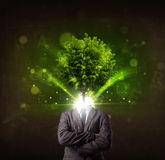 Man with green tree head concept Stock Photo