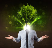 Man with green tree head concept Stock Image