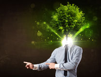Man with green tree head concept Royalty Free Stock Image
