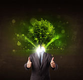 Man with green tree head concept Stock Images