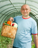 Man   in greenhouse Royalty Free Stock Image