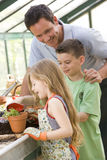 Man in greenhouse helping two young children Royalty Free Stock Photography