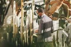Man in Grey Suit Beside Cactus Painted Fence Stock Images